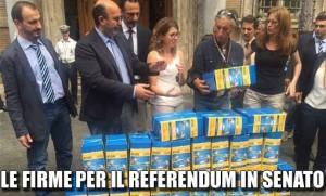 firme_senato